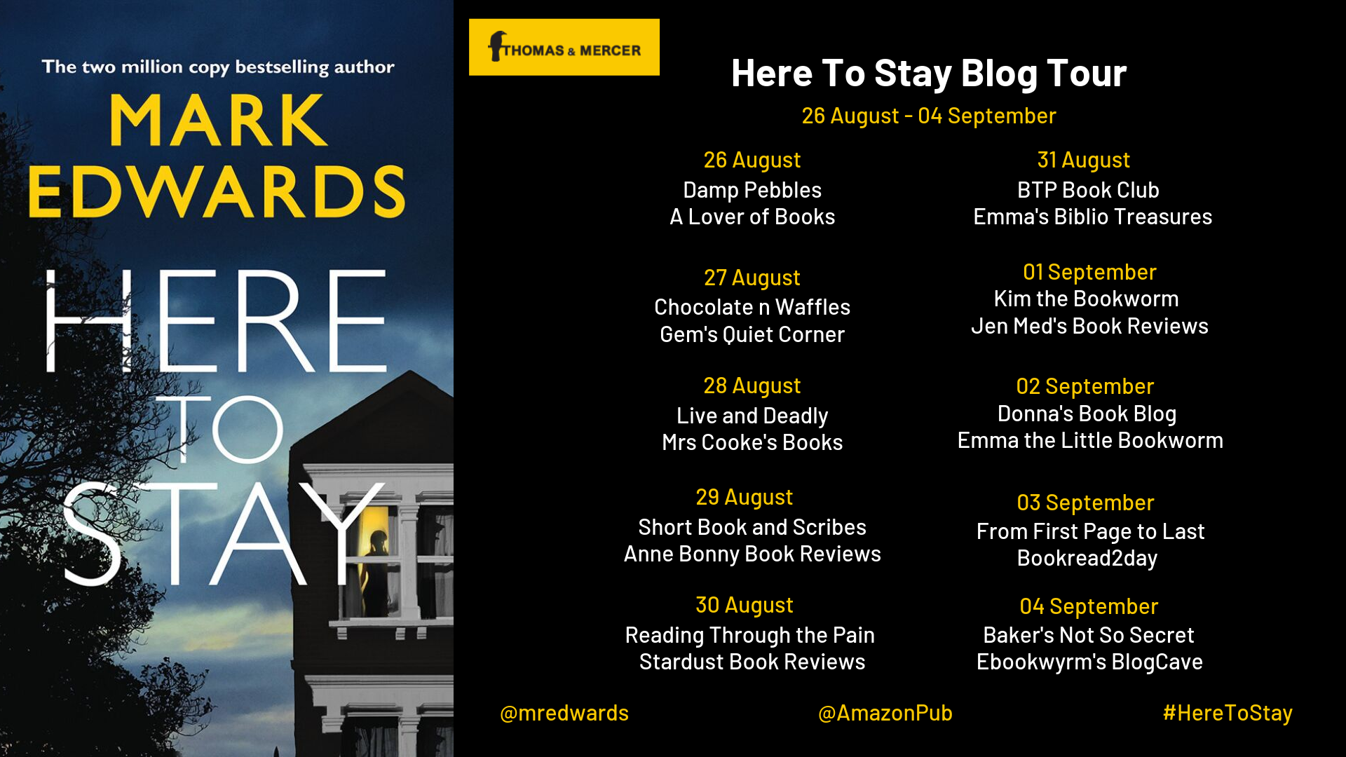 Here To Stay Blog Tour Banner Final