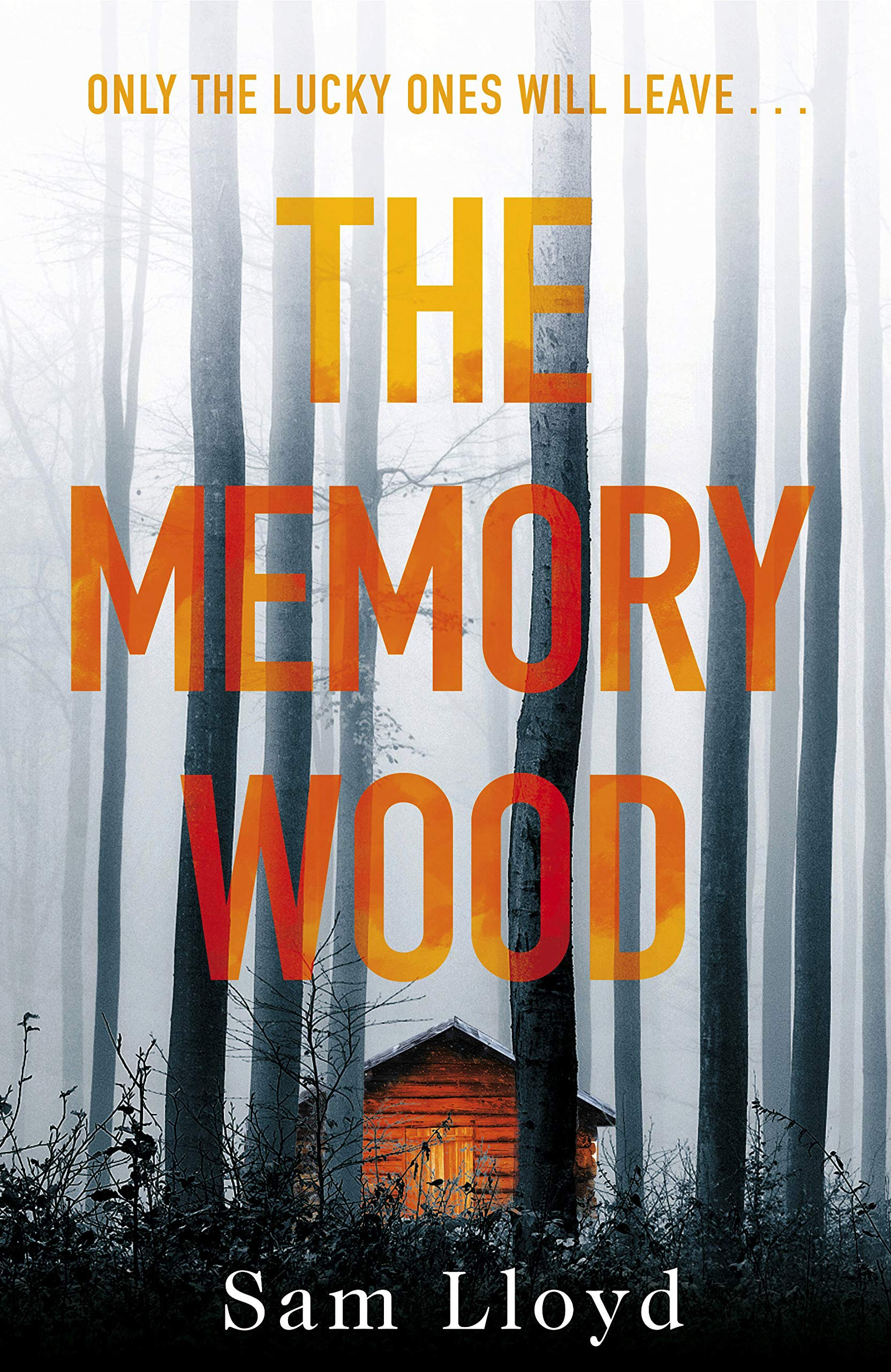 The Memory Wood Cover
